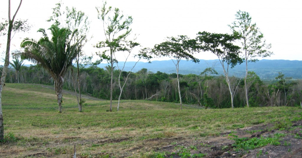 For Sale:11 Acres of Beautiful Land Outside of San Ignacio Town Belize(SOLD)